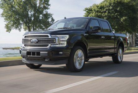 Ces camions qui sont devenus des véhicules pour la famille