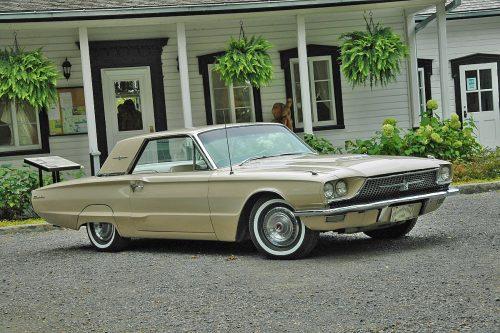 Ford Thunderbird1966